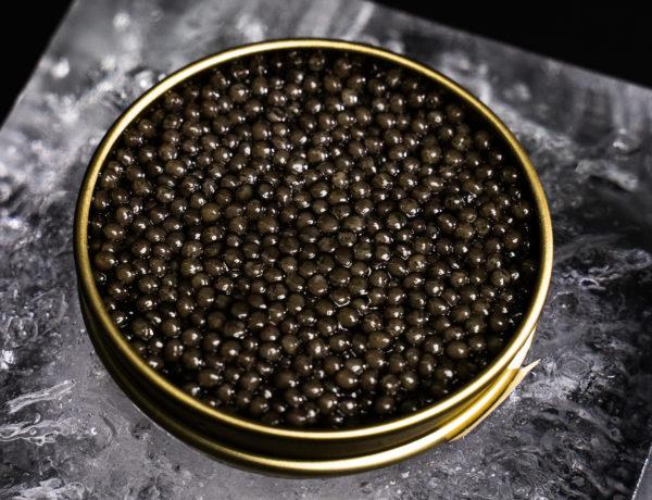 Ice-factory-RBC-29-600x460 Royal Belgian Caviar L'or noir belge