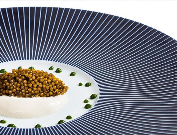 aurea-600x460 Aurea Ova Caviar d'exception