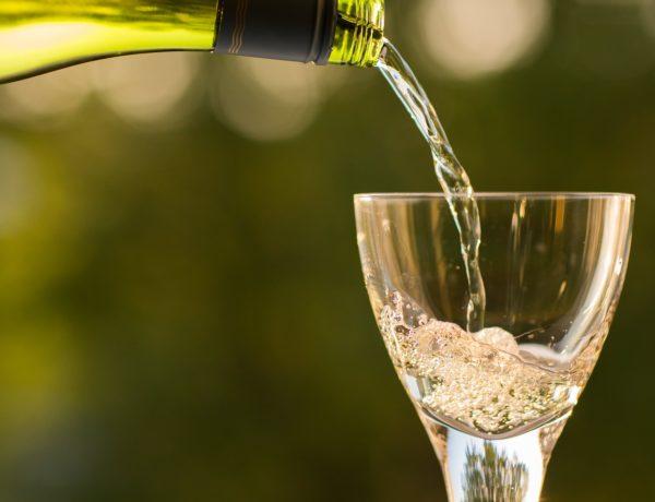 bottle-1836261_1920-600x460 Champagne de SOUSA Au cœur de la côte des blancs