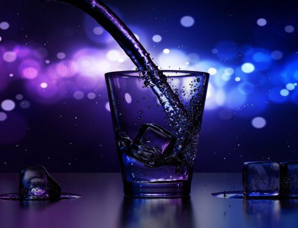drink-1870139_1920-600x460 LES COFFRETS MEUKOW ET JÄGERMEISTER POUR LES FÊTES.