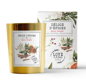 DELICE-DEPICES-300x292 Top des bougies olfactives pour Noël