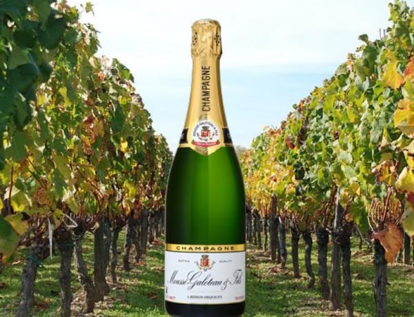 Capture-1-600x460 Champagne Moussé Galoteau & Fils