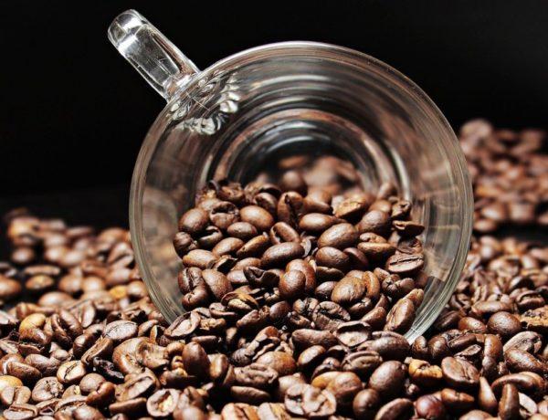 coffee-beans-2258839_1280-600x460 Concours Jeune Professionnel du Café MALONGO 2021