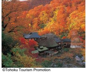 japon1 Japon insolite : À la découverte de 5 lieux  hors des sentiers battus