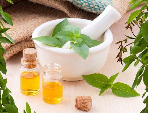 "essential-oils-3456303_1920-600x460 Meden agan ou ""Rien de trop"" en grec"