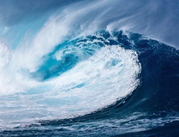 wave-1913559_1920-600x460 Le pop-up store Quiksilver